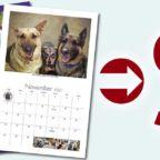 Calendar Fundraiser Sales